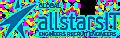 AllStars-IT Group